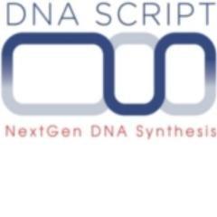 Startup DNA SCRIPT